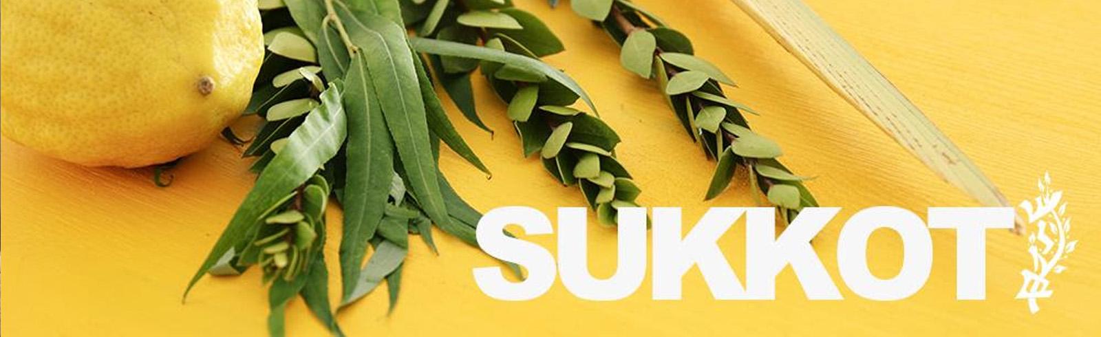 sukkot-homepage